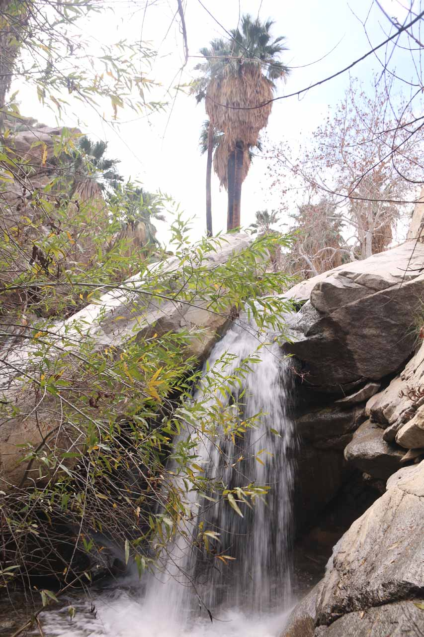 Right in front of the first main Murray Canyon Falls