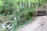 Myrafalle_045_07092018 - The well-built trail went up alongside the Myrabach as it made its tumble as part of the Myrafälle series of cascades and waterfalls