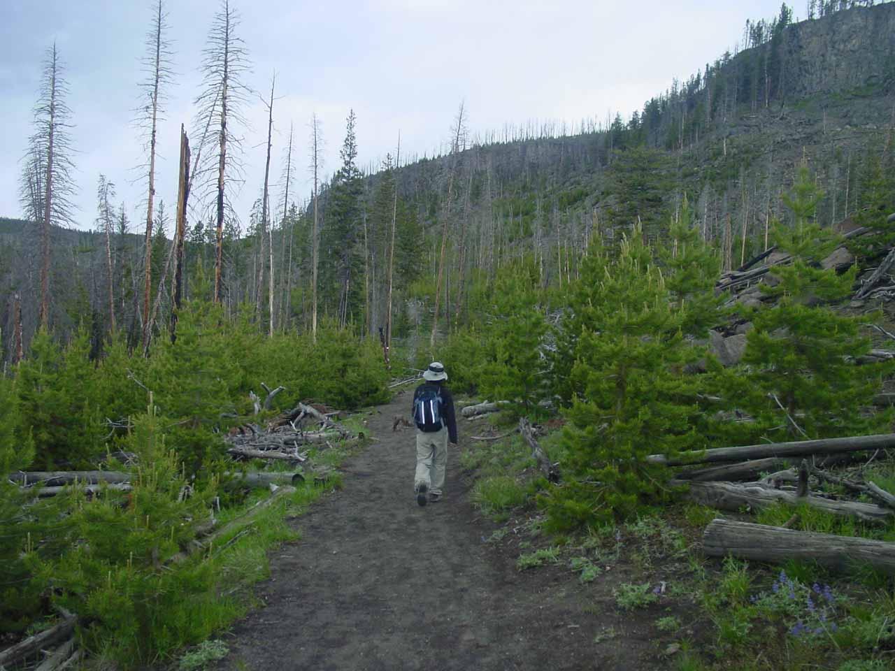 Julie on the Mystic Falls Trail