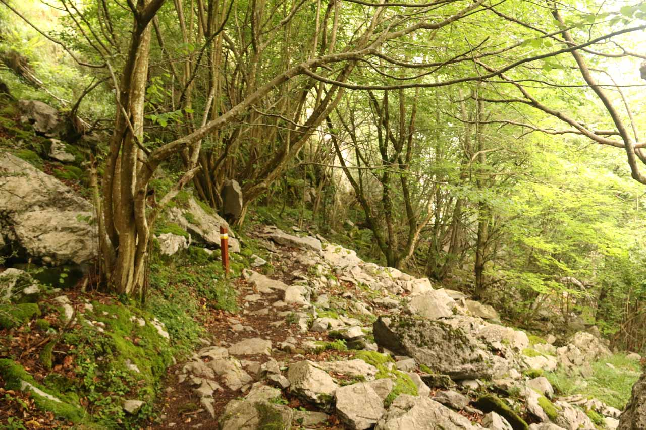 Here's a look at the rough and rocky trail leading to the base of the Nacimiento del Río Asón