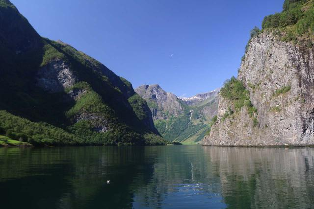 Cruising on the the quiet and narrow Nærøyfjord