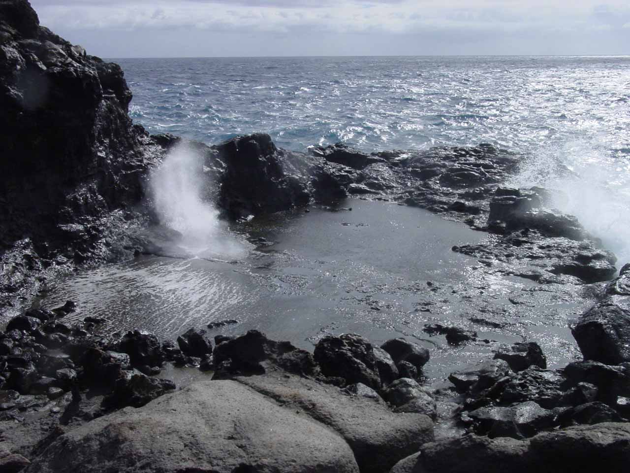 Looking over a smaller blowhole