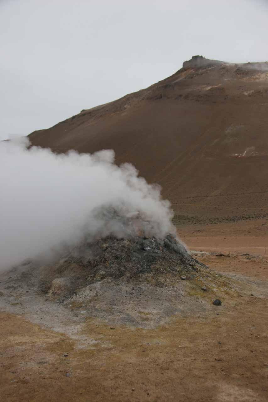 Steam vent blowing off steam at Námaskarð between Mývatn and Jökulsárgljúfur
