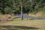 Nandroya_Falls_004_05162008 - The road by the start of Nandroya Falls