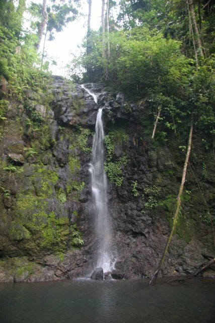 Nandroya_Falls_011_05162008 - Silver Creek Falls