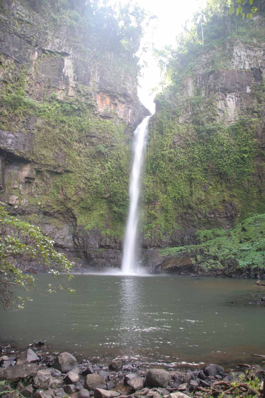 Looking right at the inviting Upper Nandroya Falls at the end of the walking track