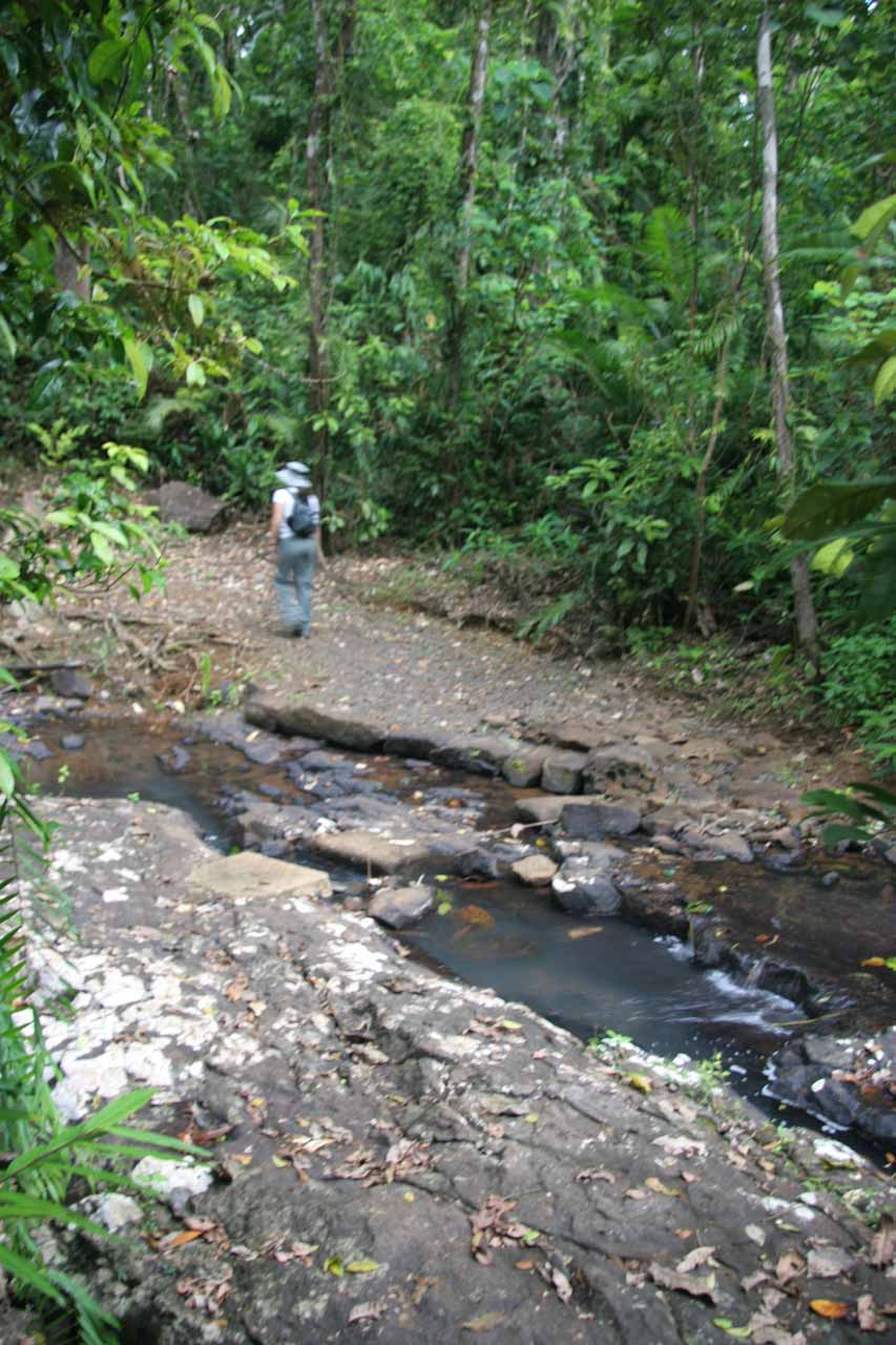 Julie crossing over a creek on the way back to the car park