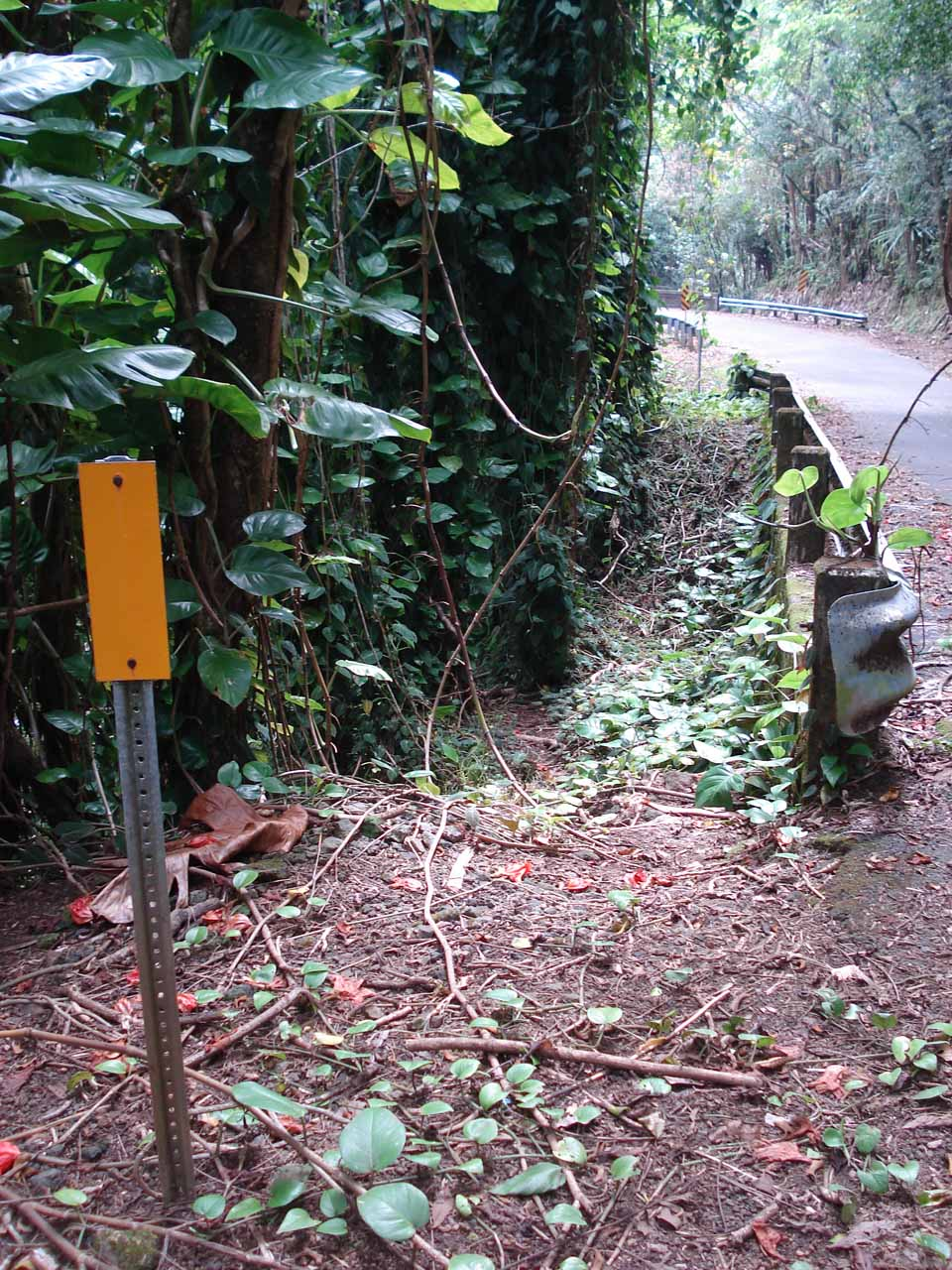 Guardrail near the start of the scramble