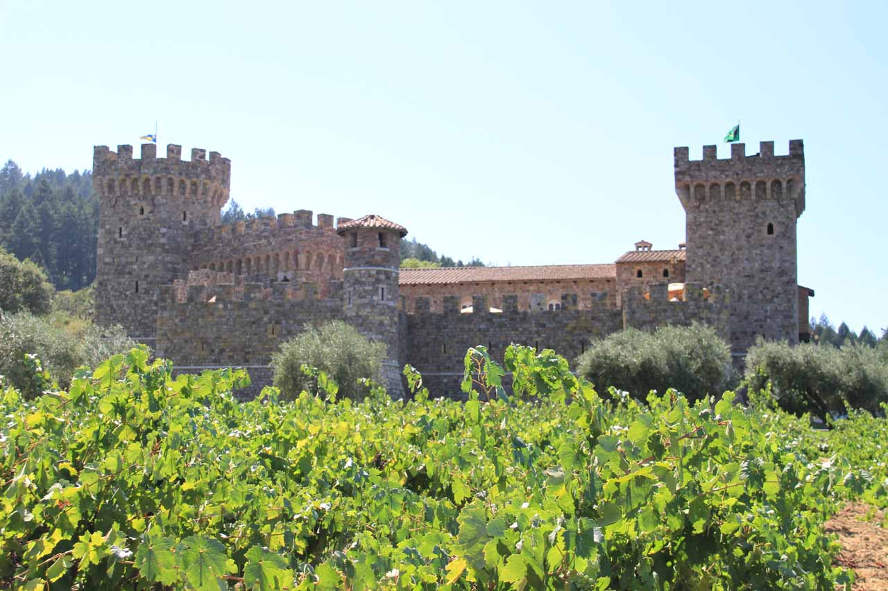 Adjacent to Sonoma Valley was the famed Napa Valley, where numerous vineyards offered wine tasting as well as some interesting architecture like the Tuscan-inspired Castello di Amorosa