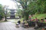 Nara_004_05302009