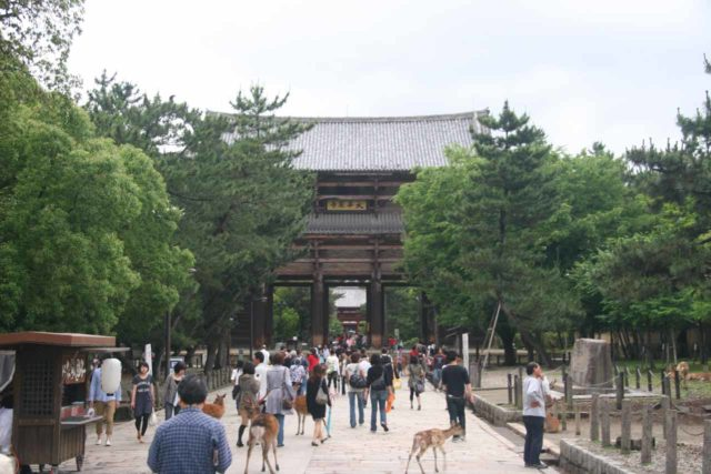 Nara_041_05302009 - East of Osaka was the city of Nara, which featured the Todai-ji Temple as well as a pleasant park surrounding it while allowing deer to roam around