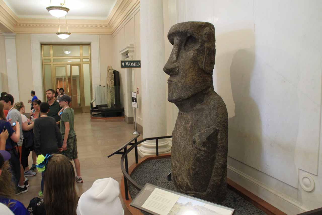 Checking out an Eastern Island moai statue