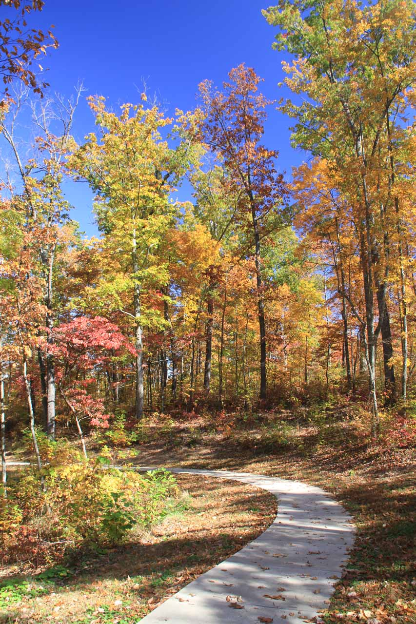Paved walkway to an overlook beneath colorful foliage