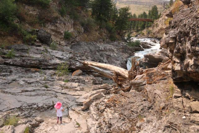 Natural_Bridge_Falls_094_08092017 - Context of Tahia and the disappearance of the Boulder River over the remaining Natural Bridge