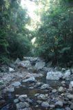 Natural_Bridge_Springbrook_021_05092008
