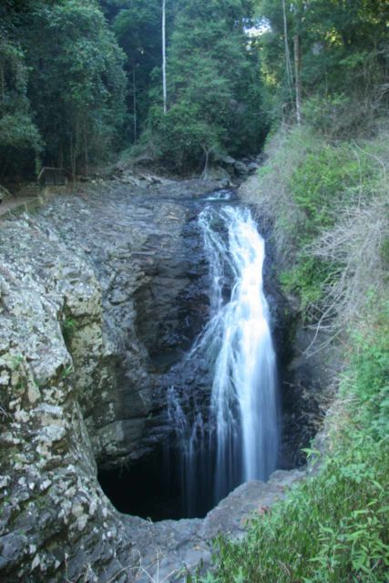 Natural_Bridge_Springbrook_095_05092008