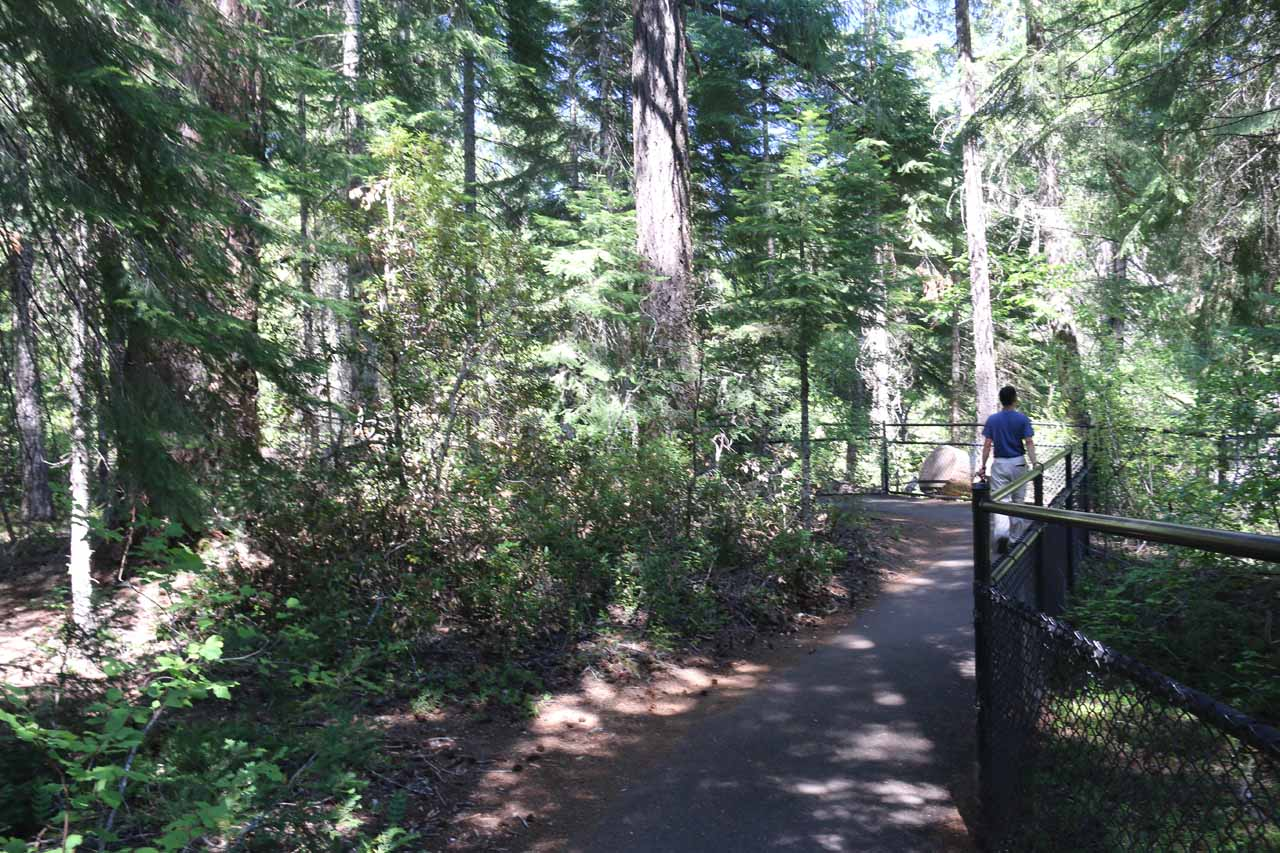 After the footbridge, the paved path continued along the western banks of the Rogue River