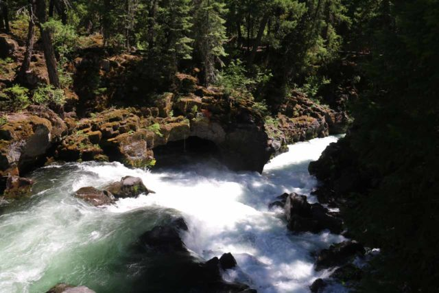 Natural_Bridge_rogue_026_07152016 - Looking across a turbulent cascade towards a cave spring just downstream of the Natural Bridge on the Rogue River
