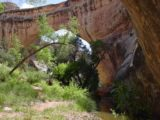 Natural_Bridges_NM_012_05242003 - The backside of Sipapu Natural Bridge