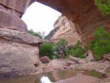 Natural_Bridges_NM_024_05242003 - Kachina Natural Bridge