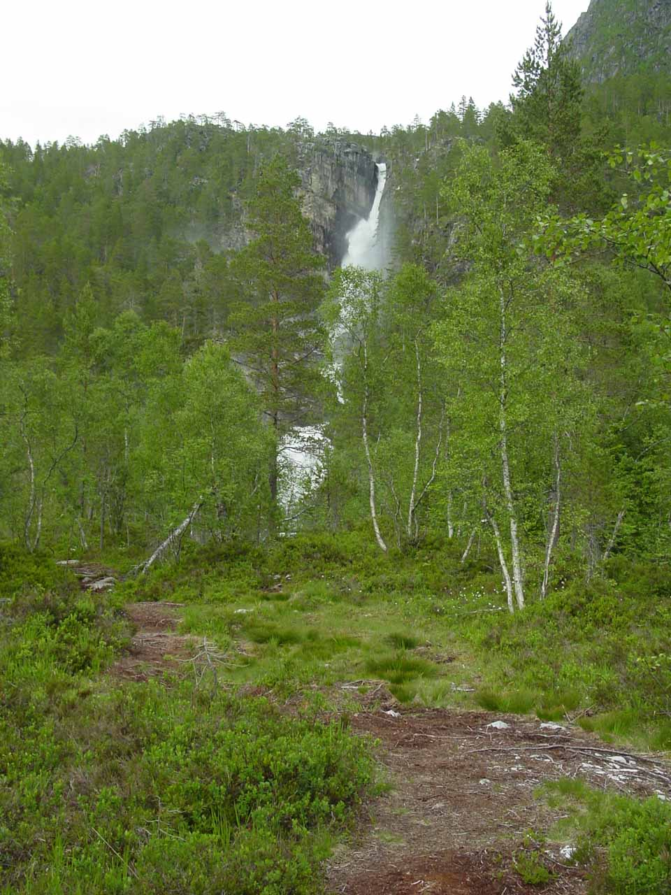 The lower part of Nauståfossen started to have its view obstructed by trees