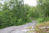 Navitfossen_074_07052019 - On the trail leading to Roykfossen