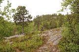 Navitfossen_082_07052019 - Traversing these small granite mounds just as the trail to Røykfossen started to skirt alongside the Navitelva again