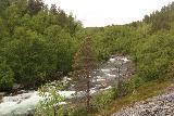 Navitfossen_084_07052019 - Looking towards the Navitelva as I was making my way to Røykfossen