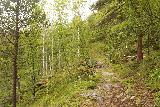 Navitfossen_090_07052019 - The trail continuing to climb up towards an overlook of Røykfossen