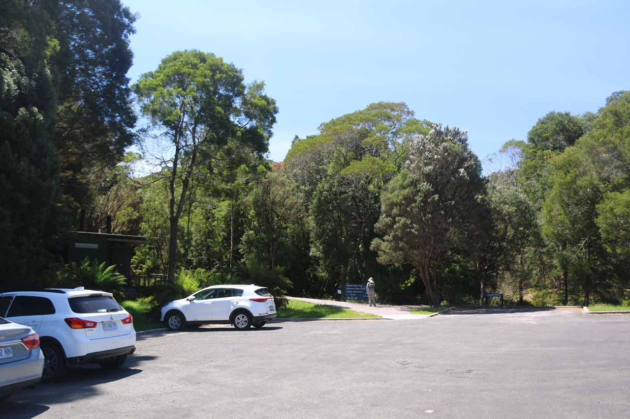 The Nelson Falls car park, which was right next to the Lyell Highway