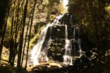 Nelson_Falls_17_040_11282017 - Looking at Nelson Falls from the lookout during our late November 2017 visit, which was a bit further back from where they used to let us go to in November 2006