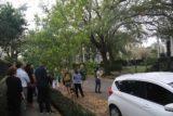 New_Orleans_Garden_District_026_03152016