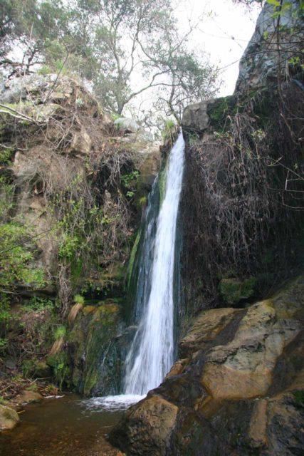 Newton_Canyon_Falls_007_03072010 - Newton Canyon Falls