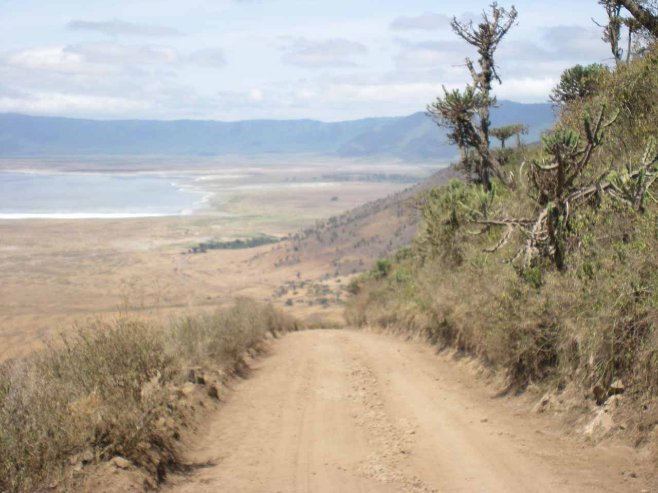 Entering the Ngorongoro Crater via Descent Road