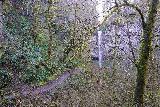 Niagara_and_Pheasant_Creek_Falls_045_04082021 - Looking towards Pheasant Creek Falls from near the base of Niagara Falls