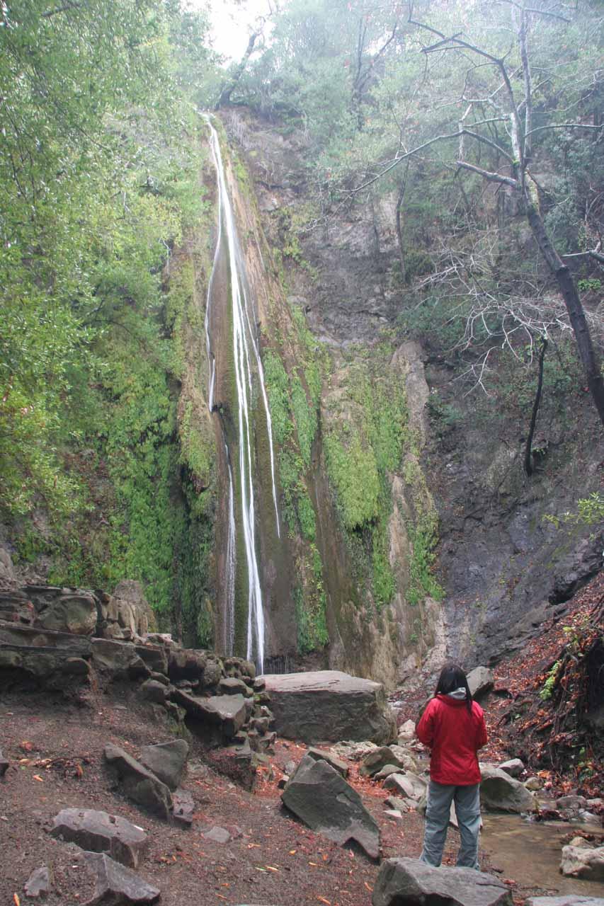 Julie checks out Nojoqui Falls