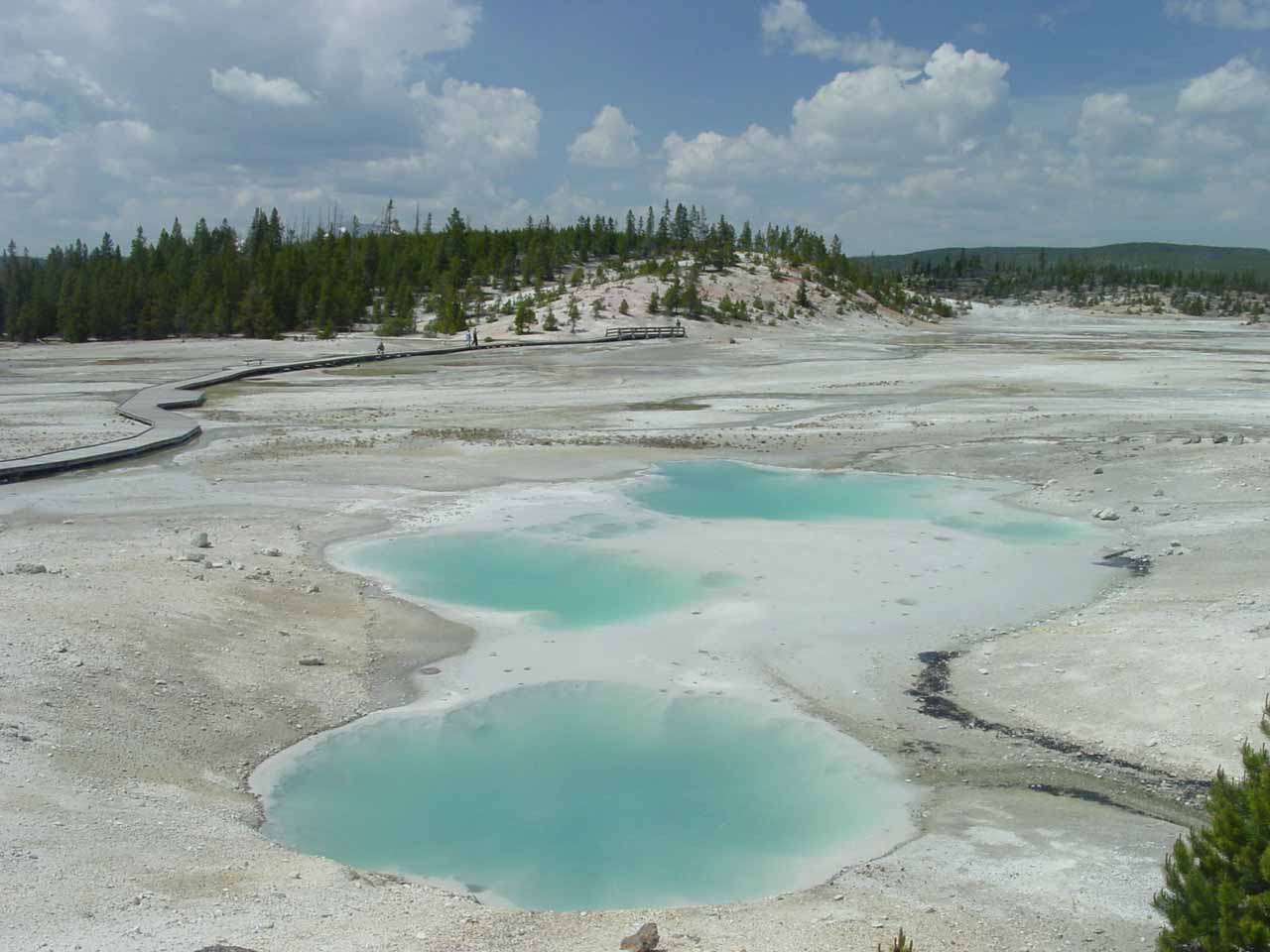 Nearby Gibbon Falls is the otherworldly and geothermically active Norris Geyser Basin.  I could see why this called this part the Porcelain Basin