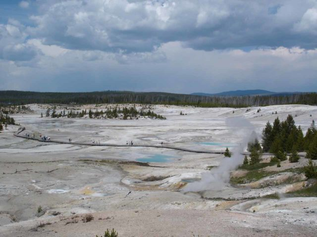 Norris_029_jx_06222004 - Close to the Virginia Cascade Road turnoff is the Norris Geyser Basin.  This photo here was taken from the Porcelain Basin portion.  Guess how it got its name.