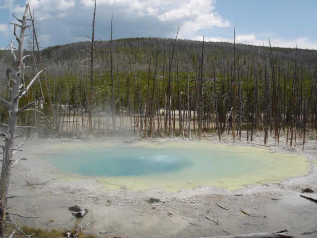 Norris_040_jx_06222004 - Even though Norris was geothermally active during our visit, the geysers weren't predictable.  So none of them went off as we had hoped.  Instead, we got intriguing pools like this one at the Echinus Geyser