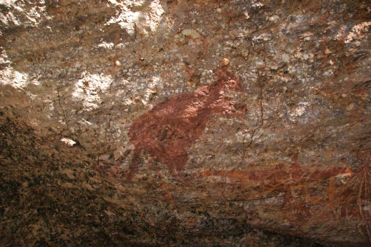 Another drawing of a kangaroo at Nourlangie Rock