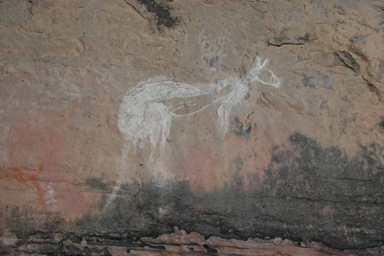 And another rock chalk kangaroo art at Nourlangie Rock