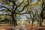 Oak_Alley_Plantation_008_03142016