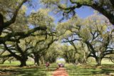 Oak_Alley_Plantation_149_03142016