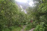 Oddadalen_082_06232019 - Hint of Tjornadalsfossen as I was ascending the closed off road to get a closer look