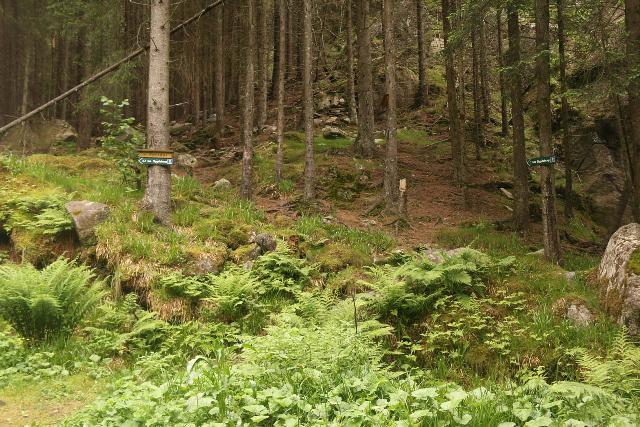 Oddadalen_087_06232019 - Signs pointing the way to get to Bygdeborg near Tjørnadalsfossen