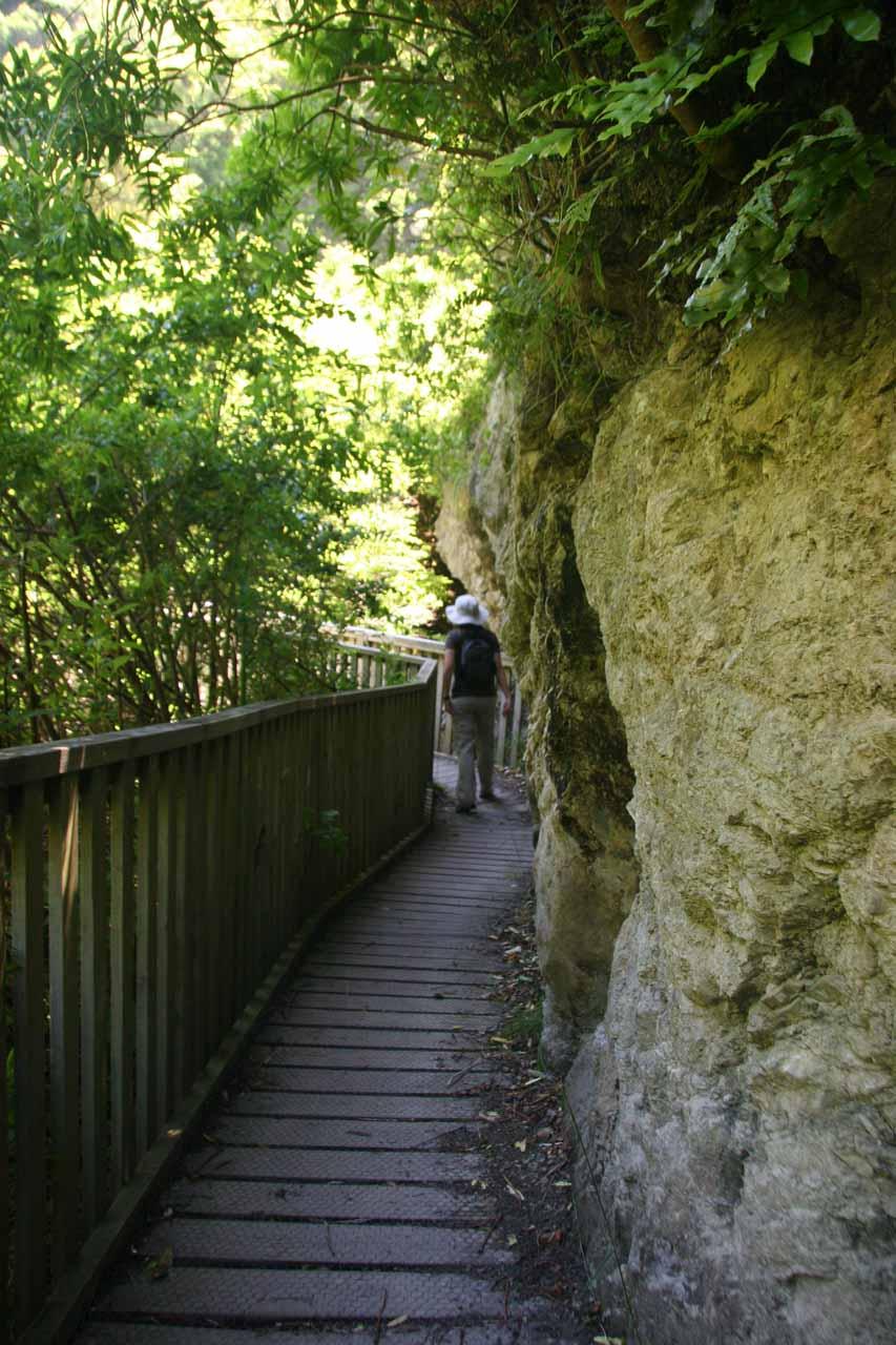 Julie on the well-developed boardwalk following along the Ohau Stream