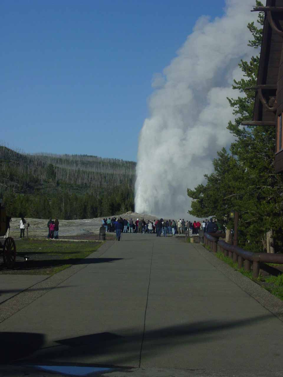 Distant look at Old Faithful Geyser as we returned to Old Faithful Inn