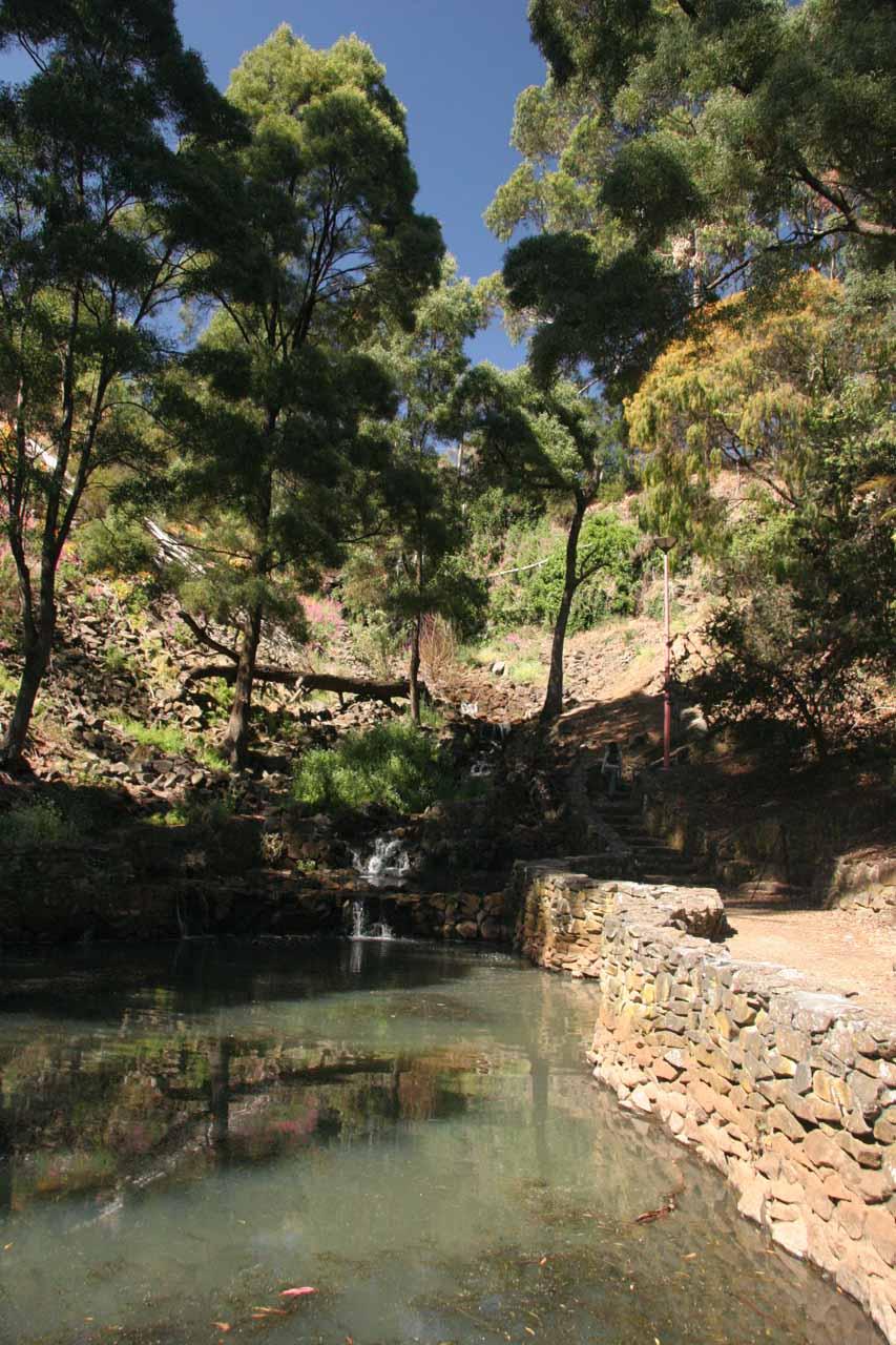 The stagnant creek running through the park at Oldaker Falls