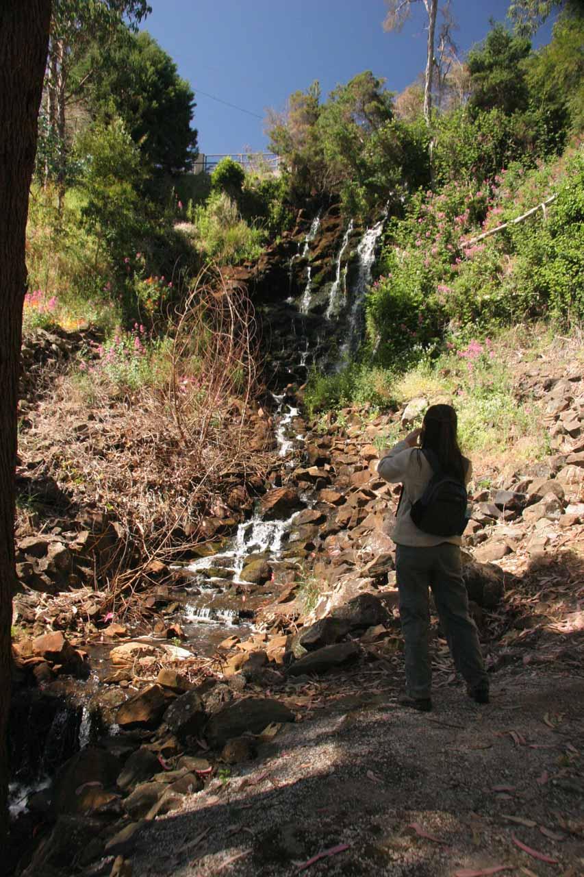 Julie checking out Oldaker Falls