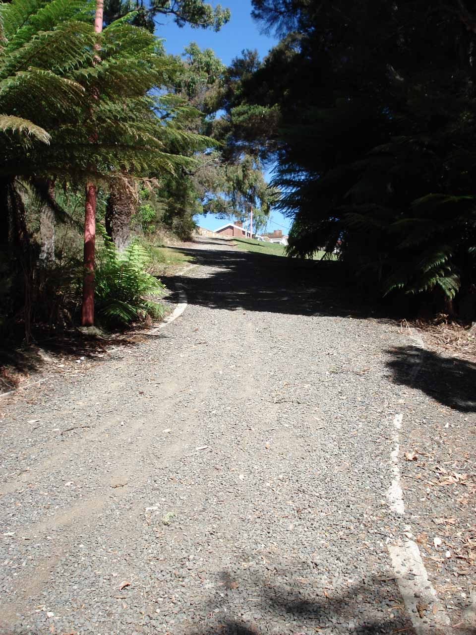 This gravel path was an alternate entrance to Burnie Park from the residences above.  Clearly, there were many ways besides our route to reach Oldaker Falls